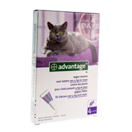 Advantage  80 A/Vlo Katten >4Kg 4X0,8Ml